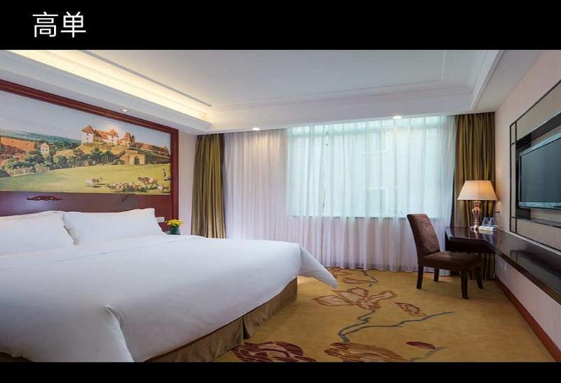 Vienna Classic Hotel Zhongshan Ave Tangxia Branch (وین كلاسیك هتل ژونگشان آو تانگکسیا برانچ)  Room