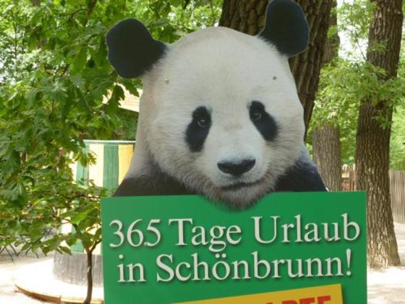 Apartment24 Schoenbrunn (آپارتمنت۲۴ اسکنبرون)